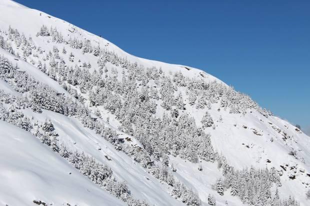 Luz ardiden ski neige.jpg